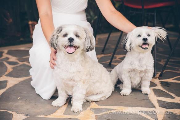 Wedding-Krystal&Dylan-0802