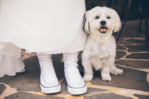 Wedding-Krystal&Dylan-0811